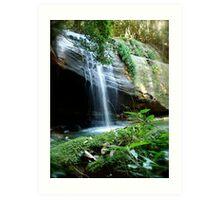 Buderim Waterfall Art Print