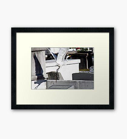 Rising from the Dead Framed Print