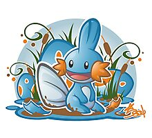 Pokemon - Mudkip - Render Cut Photographic Print