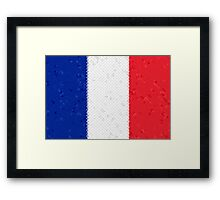 France Flag Mosaic Framed Print