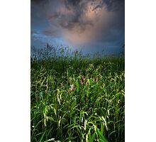 Overcast Life Photographic Print
