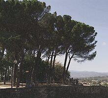 Arezzo, Tuscany, Italy by newbeltane