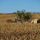 Straw Bales and Mower by Scott Hendricks