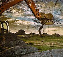 Destruction at Dog Rocks by Julie Begg