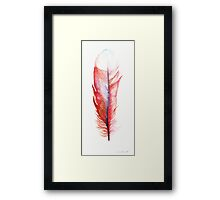 Watercolor Feather Red Framed Print