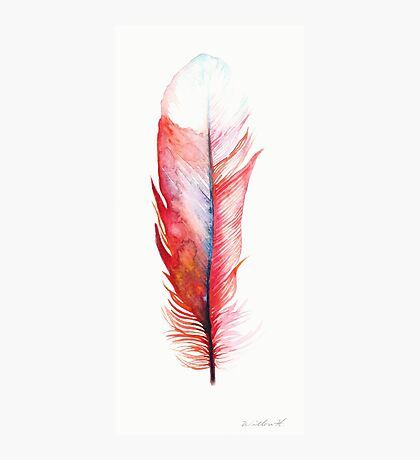 Watercolor Feather Red Photographic Print