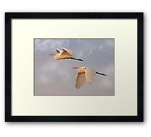 Flying Together At Dawn Framed Print