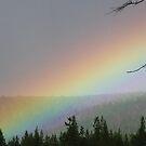 Rainbow Realm by ArtOfE