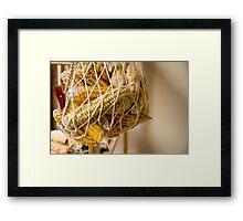 Dry Corns Framed Print