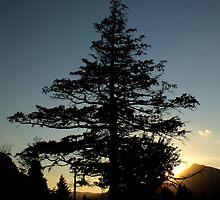 Sunset Over Cascade Locks by artisandelimage
