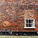 Lonely Window by Irina Chuckowree