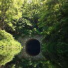 Swim Through A Tunnel by barnsis