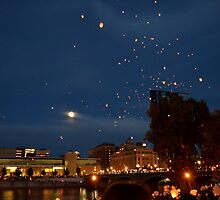 Chinese Lanterns 3 by Debbie  Maglothin