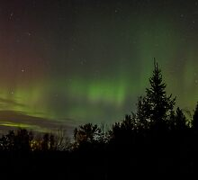 Northern Lights by Bill McMullen