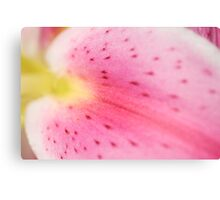 ~lily~ Canvas Print
