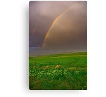 """""""A Late Afternoon Shower"""" Canvas Print"""