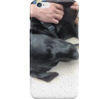 Adorable Black Labrador Pup iPhone Case/Skin