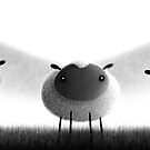 Sheep by TimD