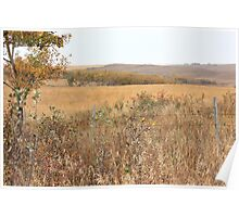Alberta Prairie Farmland in Autumn Poster