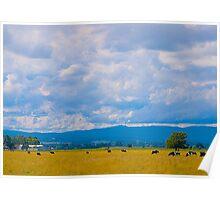 Excellent Farmland, Cardinia Swamp, Gippsland , Victoria. Poster