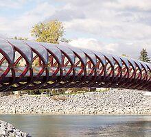 The Peace Bridge by Heather Eeles