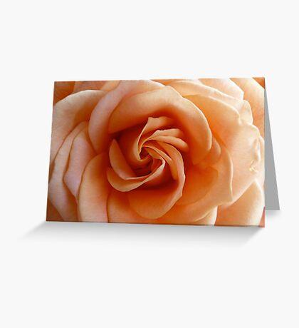 Peach Rose - 2:3 Greeting Card