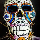 Haunted Skull by GalleryThree
