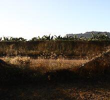Gunbalanya, Arnhem Land by katrina-marie