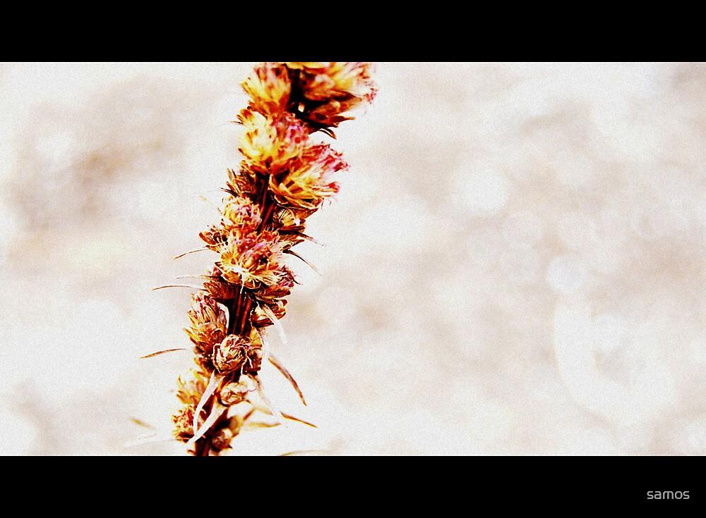 Fall Upon Us by samos