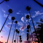 California Sunset by Graham Gilmore