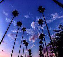 California Sunset by Graham Gilmore