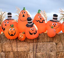 Pumpkin Brothers by Agro Films