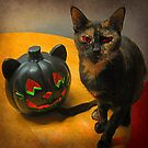 Happy Halloween Kitties by Jane Neill-Hancock