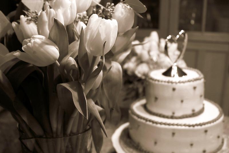 Tulip Love by Trish Mistric