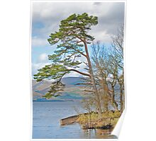 The Bonnie Banks of Loch Lomond Poster