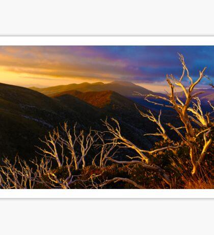 0389 Mt Hotham Brush Sticker