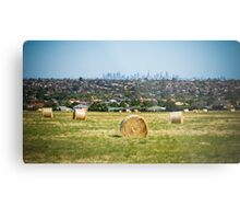 A View to Melbourne from the Greenvale Rose Farm Metal Print
