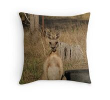 The Essence of a Warrior Throw Pillow