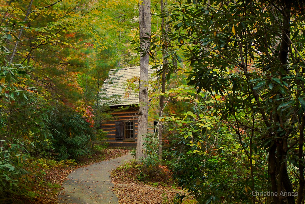 Nestled in the Woods by Christine Annas