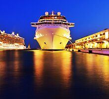 Celebrity Silhouette by Ryan Davison Crisp