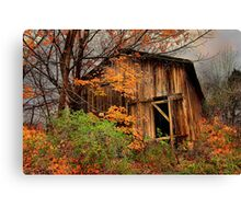 """"""" The Hideout in the Back Forty """" Canvas Print"""