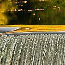 water dimple by Paul Kavsak