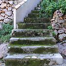 Escalera rustico. by John  Smith