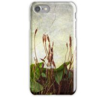 Wintry Weeds 1...........................Most Products iPhone Case/Skin