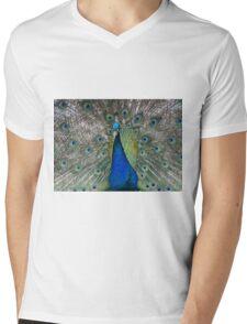 Blue Haze Mens V-Neck T-Shirt