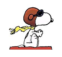 flying snoopy dom Photographic Print
