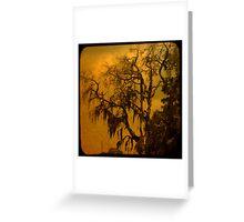 MOSSY TREE AT DUSK Greeting Card
