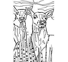 Elk, coloring book page Photographic Print