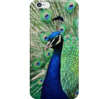 Peacock Display iPhone Case iPhone Case/Skin