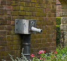 Old Garden Water Pipe by Sue Robinson